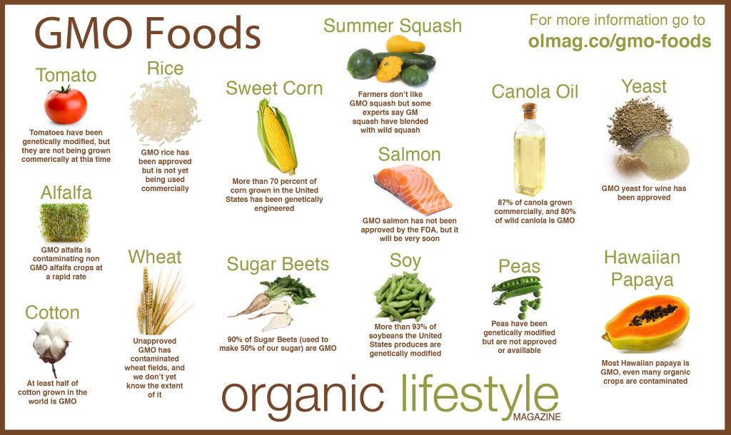 olmag.cogmo-foods