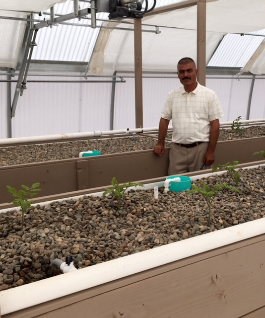 (Photo by Christina Estes - KJZZ) Farmer Hussein Al Hamka looks forward to learning aquaponics so he can grow his special produce year round.