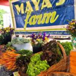 Maya_Market